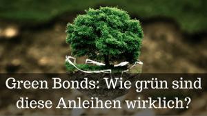 Green Bonds: Grüne Anleihen einfach erklärt